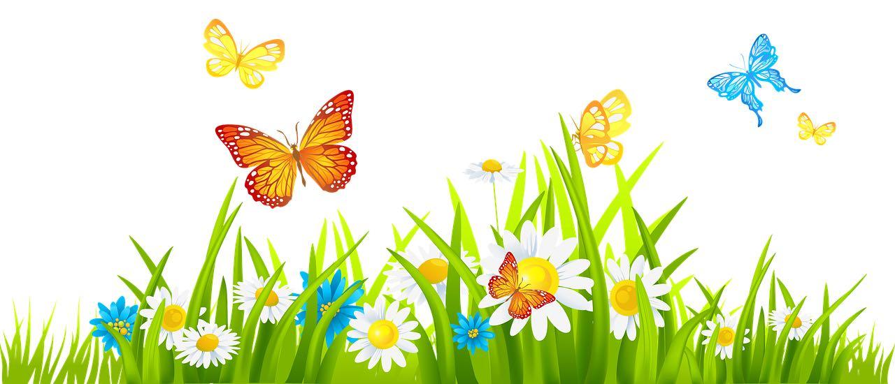flowersbutterflies-free-980x450.jpg